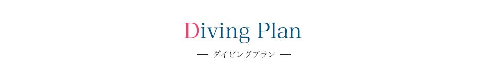Diving Plan ダイビングプラン