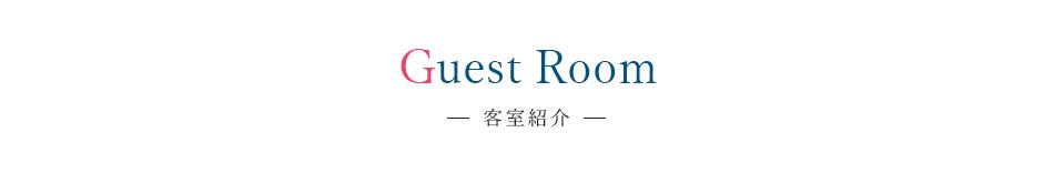 Guest Room 客室紹介